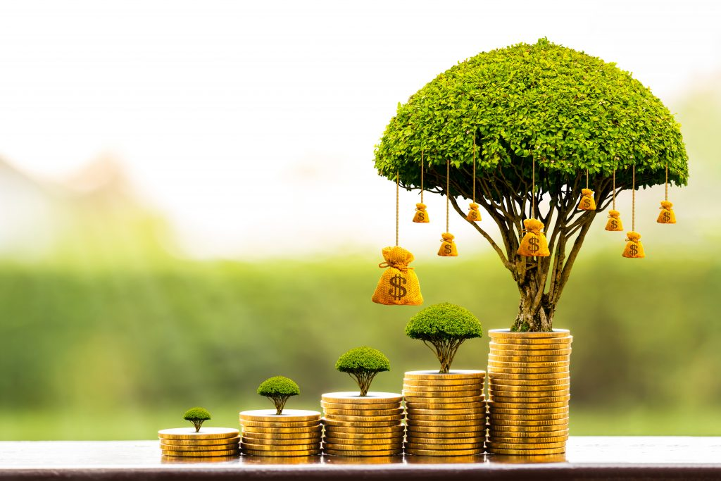 Stacking gold coins and money bag of tree with growing put on the wood on the morning sunlight in public park, Saving money and loan for business investment concept.